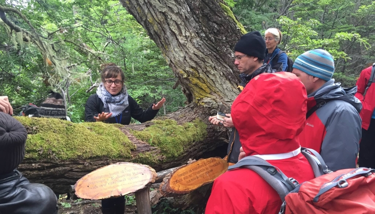 Dr. Lily Lewis talks about bryophytes with people gathered around a mossy tree in southern Chile.